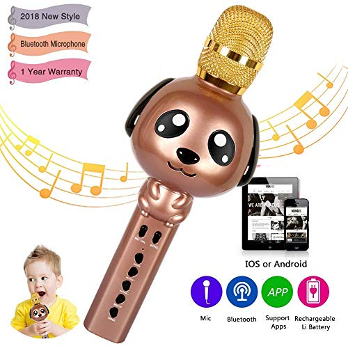 15. Rhllxzo Bluetooth Kids Karaoke Machine