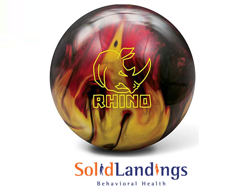Best Bowling Ball in 2021 – Reviews & Comparison of the Top 15