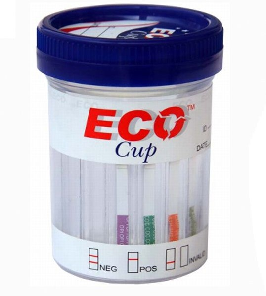 10 Panel Eco Cup